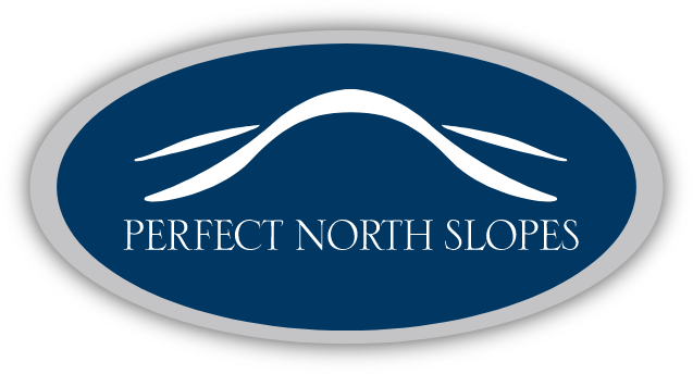 Perfect North Logo